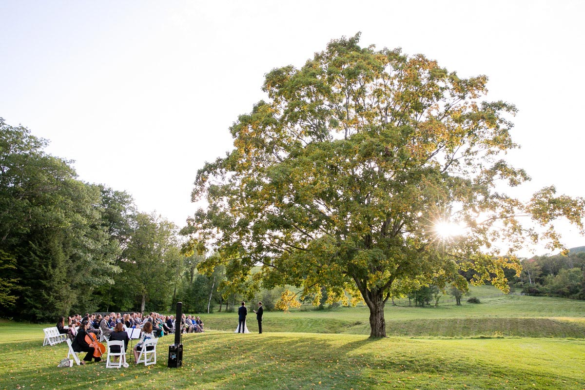 Clark Art Institute Wedding